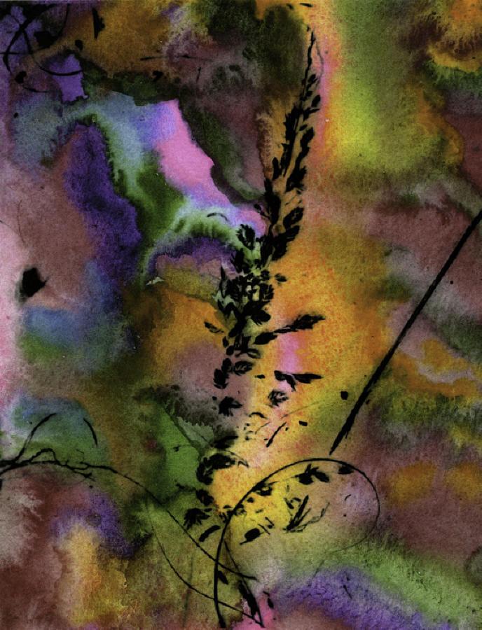 coloredseagrassCD